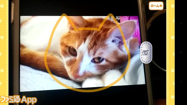 猫耳サシカエ画像