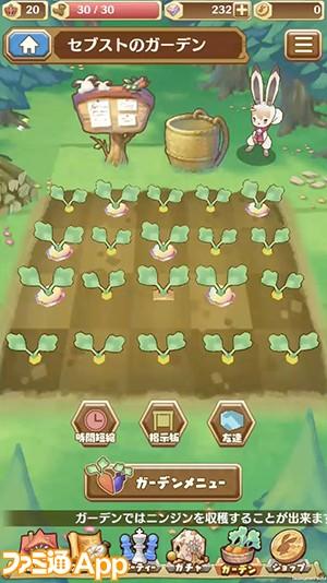 ガーデン_畑