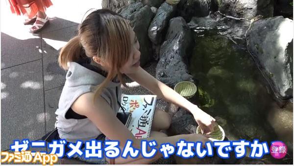 ポケモン_02