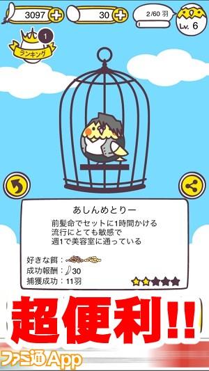 tori13.jpg書き込み