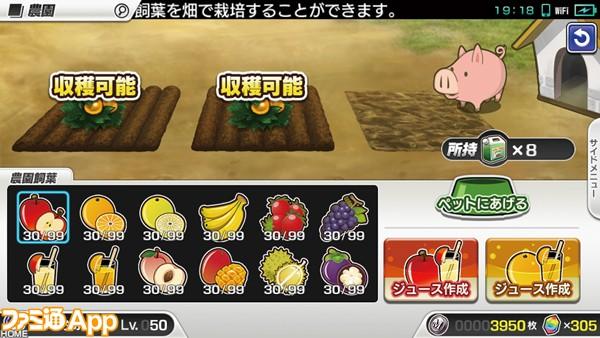 10_農園