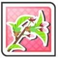 春組のつぼみ
