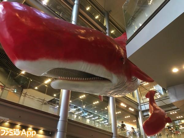 巨大クジラ