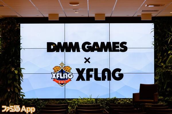 DMMXFLAG002