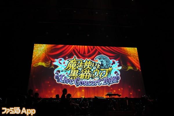 黒猫コンサート026