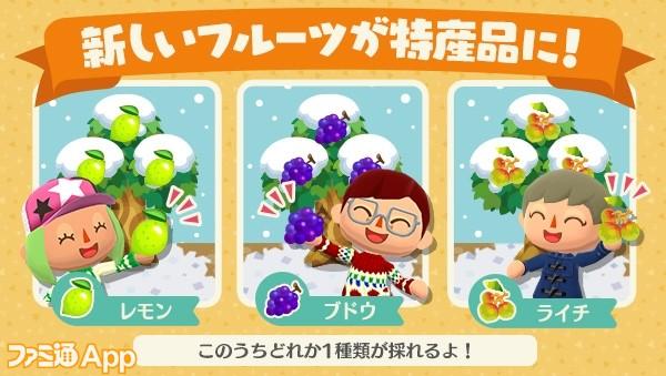 フルーツの木3種