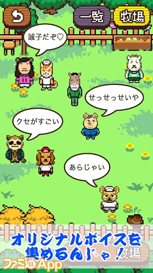 よしもと大運動会07