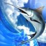 【配信開始】世界の大陸を巡って全300種の魚たちをコンプリートせよ!本格釣りゲー『FISHING HERO NEO』