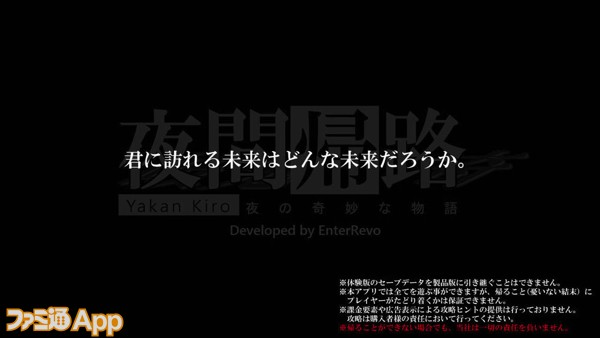10_画面写真_夜間