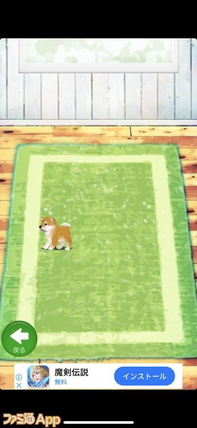 20200424_犬ゲー (19)