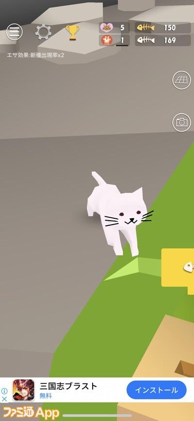 20200429_猫 (15)