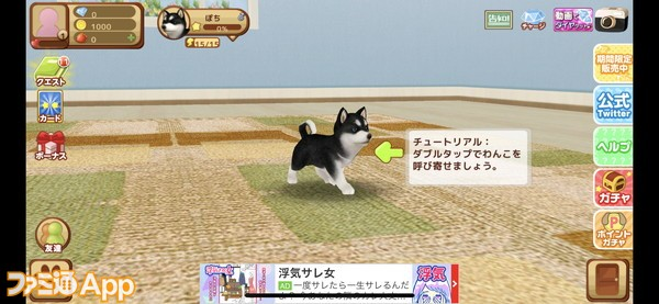20200424_犬ゲー (3)