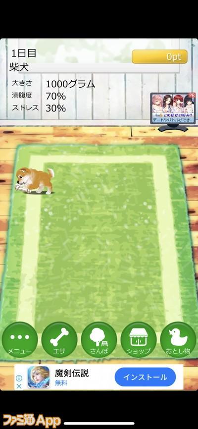 20200424_犬ゲー (21)