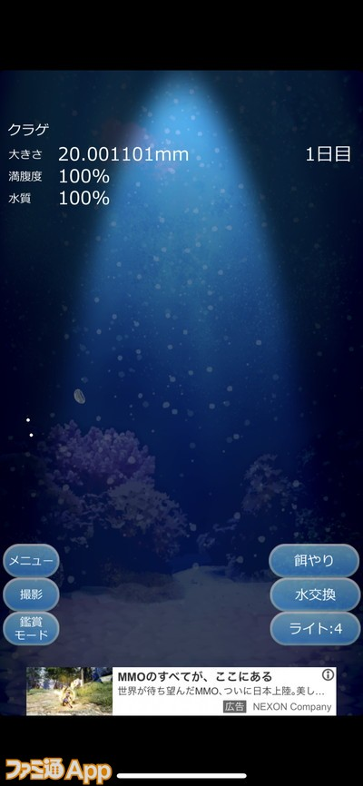 20200501_育成 (6)