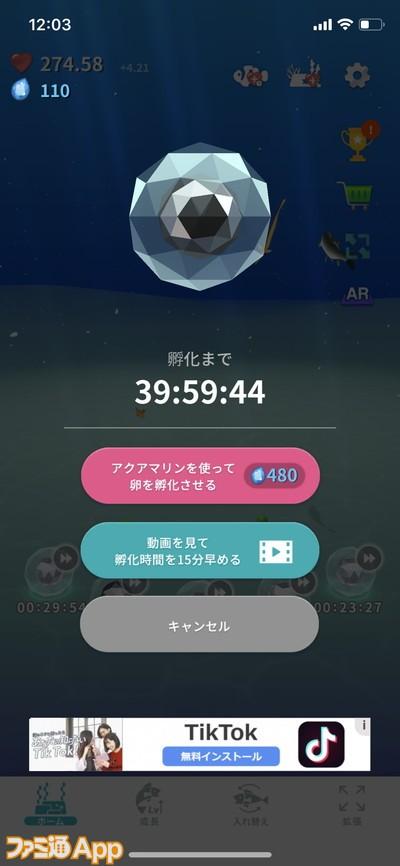 20200501_育成 (26)