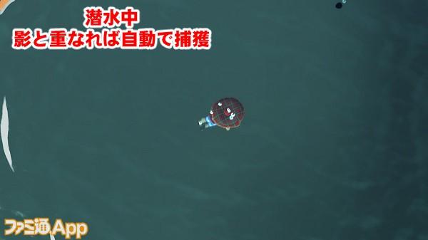 pokemorimarine13書き込み