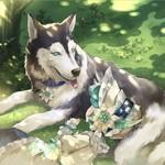 【忠犬】アーサーマランツァーノ