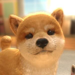 【配信開始】とってもかわいいワンちゃんと『with My DOG -犬とくらそう-』でまったり癒しタイムを過ごそう!