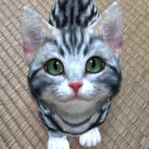 【事前登録】あなたの声に子猫が反応するペット育成ゲーム『with My CAT -猫とくらそう-』