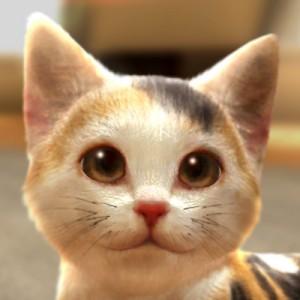 【配信開始】キュートな子猫ちゃんと新生活を始めよう『with My CAT-猫とくらそう-』